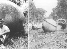 costa-rica-kivikuulid-stone-balls_15