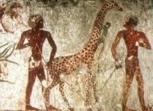 Human-Bible-Giant-Giants-Nephilim-Anunnaki-Hidden-History-17