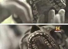 Human-Bible-Giant-Giants-Nephilim-Anunnaki-Hidden-History-20