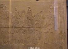 Human-Bible-Giant-Giants-Nephilim-Anunnaki-Hidden-History-54