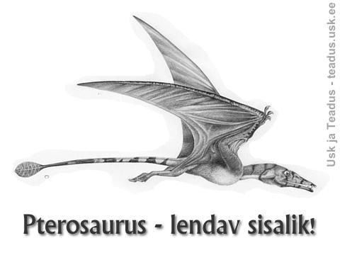 Rhamphorhynchus-Pterosaurus-lendav-sisalik-flying-lizard