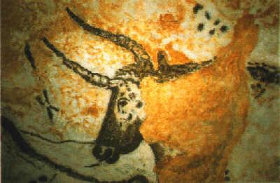 Cavetaur-koopamaaling