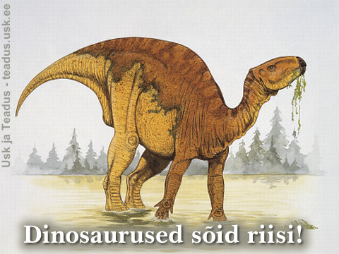 Dinosaurus-dinosaurused-soid-toit-taimed-riis