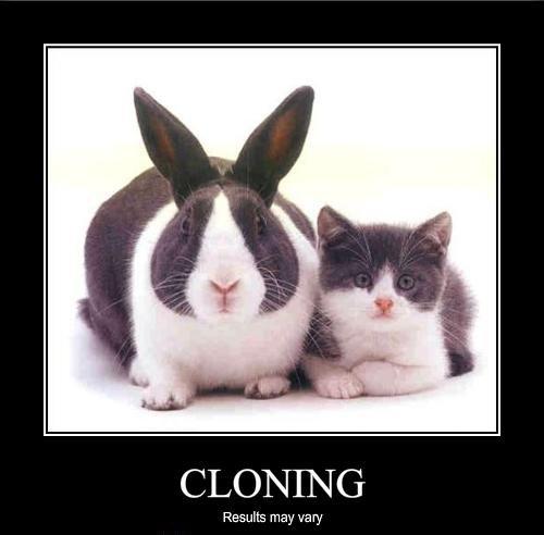 Kloonimine-ettevaatust