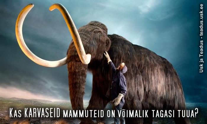 mammutite-tagasitoomine-kloonimine-dna