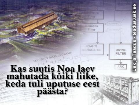 Noa.laev_veeuputus_b