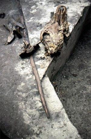 Soekavendusest-leitud-odad-Schoningen-Saksamaa