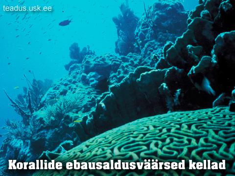 Korallid-korall-dateerimine-tateerimine-vanuse-maaramine